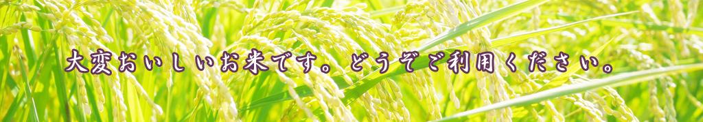 元気長寿米が人気です