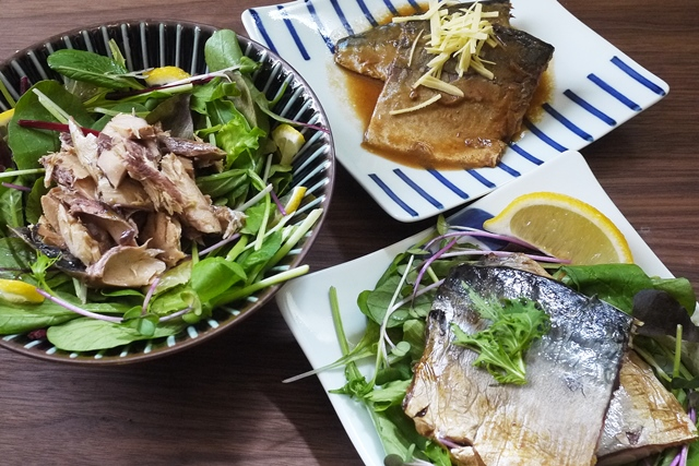 レトルトお魚惣菜(無添加)・さば味噌煮・さば生姜煮・さば塩焼き