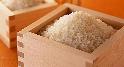 大粒のお米 元気長寿米