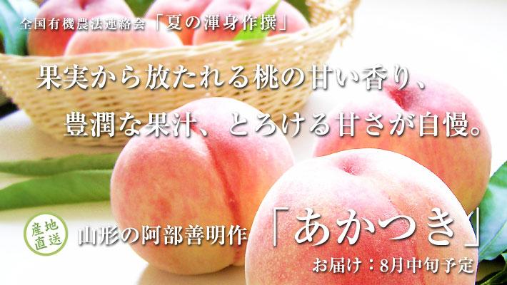 http://www.zyr.co.jp/syun/img/08/P7270057aka.jpg