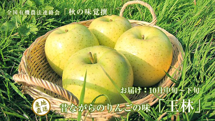 10月においしい果物 青りんご「王林」