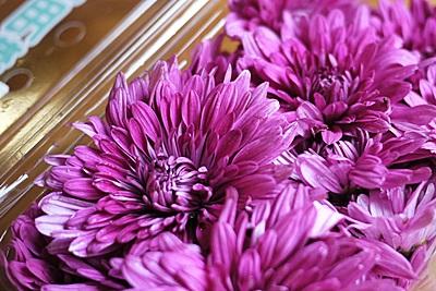 食用菊の和え物